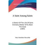 A Saint Among Saints by Mary Stanislaus MacCarthy