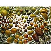 Fructe tropicale VG Vapo