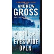 Eyes Wide Open by Andrew Gross