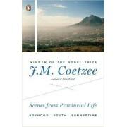 Scenes from Provincial Life by Professor of General Literature J M Coetzee