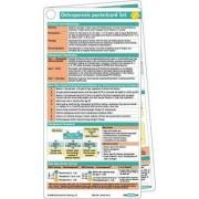 Osteoporosis Pocketcard Set by Bbp