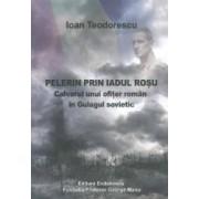 Pelerin prin iadul rosu - Ioan Teodorescu