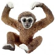 Gibbon Jong