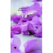 Neruda vazut de Skarmeta - Antonio Skarmeta