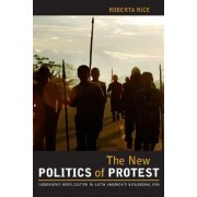 The New Politics of Protest by Roberta Rice