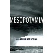 Mesopotamia by Arthur Nersesian