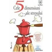 Cele 5 dimensiuni ale stresului - Laurent Oddoux