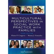 Multicultural Perspectives in Social Work Practice with Families by Elaine Piller Congress