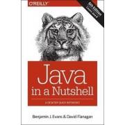 Java in a Nutshell by Benjamin J. Evans