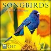 Cal 2017-Songbirds of North America