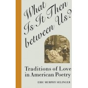 What is it Then Between Us? by Eric Murphy Selinger