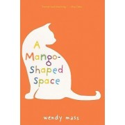 A Mango-Shaped Space by Wendy Mass