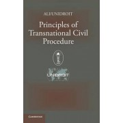 Principles of Transnational Civil Procedure by American Law Institute