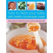 How to Feed Your Baby with Healthy and Homemade Meals by Sara Lewis