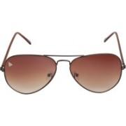 Adam Jones Aviator Sunglasses(Brown)