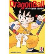 Dragon Ball, Volume 3