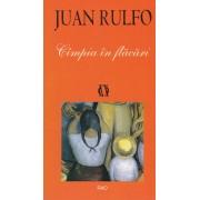 Juan Ruflo - Cimpia in flacari
