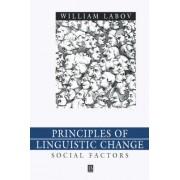 Principles of Linguistic Change: Social Factors v. 2 by William Labov