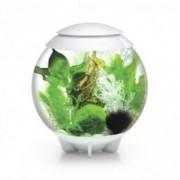 Set complet acvariu cu decoratiuni BiOrb Halo 30 litri Moonlight LED, Alb