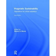 Pragmatic Sustainability: Dispositions for Critical Adaptation