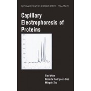 Capillary Electrophoresis of Proteins by Tim Wehr