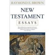 New Testament Essays