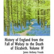 History of England from the Fall of Wolsey to the Death of Elizabeth. Volume IV by James Anthony Froude