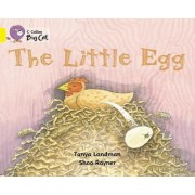 Collins Big Cat: The Little Egg: Band 03/Yellow by Tanya Landman