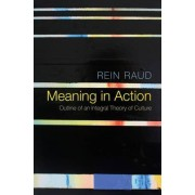 Meaning in Action by Rein Raud