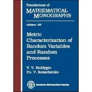 Metric Characterization of Random Variables and Random Processes by Valery Buldygin