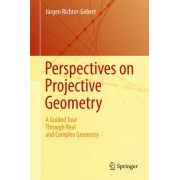 Perspectives on Projective Geometry by J