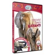 Discovery - Afla totul despre elefanti (DVD)