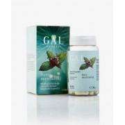 GAL Borsmentaolaj kapszula 60 db