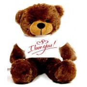 Brown 2 feet Big Teddy Bear wearing a I Love You T-shirt