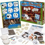 The Young Scientist Club Science on a Tracking Expedition Kit
