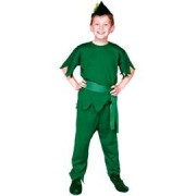 RG Costumes Robin Hood Costume, Green, Small