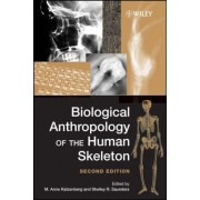 Biological Anthropology of the Human Skeleton by M. Anne Katzenberg