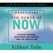 Practicing the Power of Now: Essentials Teachings, Meditations, and Exercises from the Power of Now