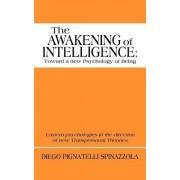 The Awakening of Intelligence by Diego Pignatelli Spinazzola
