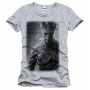 Tricou - Guardians of the Galaxy - Groot Old Picture