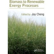 Biomass to Renewable Energy Processes by Jay Cheng