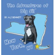 The Adventures of Big Sil New York, NY: Children's Book