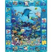 White Mountain Puzzles Dolphin Kingdom - 300 Piece Jigsaw Puzzle