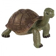 Safari Ltd Wild Safari Wildlife Giant Tortoise