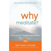 Why Meditate? by Matthieu Ricard