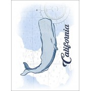 California Whale Blue Coastal Icon (Playing Card Deck 52 Card Poker Size With Jokers)