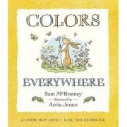 Colors Everywhere by Sam McBratney
