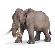Schleich African Elephant, Female 14342