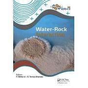 Water-rock Interaction XIII by Peter Birkle
