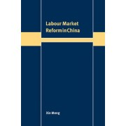 Labour Market Reform in China by Xin Meng